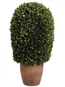 "EF-434 11""Dx24""H Preserved Boxwood Ball Topiary in Pot Green"