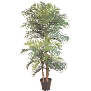 EF-2629 6.5' Island Goldan Cane Palm Tree three Trunks