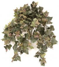 "P-2521 29"" English Ivy Bush - 348 Leaves - Mauve Green"