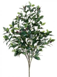 EF-135  3.5' Olive Tree  Two Tone Green (Bare Stem) (Price is for a 6pc set)