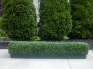 EF-2311 Custom Made Outdoor/Indoor Artificial Boxwood Hedge