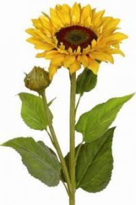 "EF-130T 36"" Sunflower 7.5"" Silk Bloom, 2"" Bud, Flocked Leaves. Gold Yellow(Price is for a set of 6pc)"