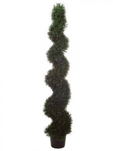 EF-486  6' Rosemary Spiral Topiary in Plastic Pot Green Indoor/Outdoor