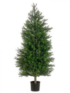 EF-514 	4' Italian Podocarpus Cone Topiary in Pot Two Tone Green Indoor/Outdoor