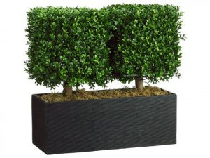 "EF-7668  24""Hx12""Wx26""L Boxwood Topiary in Rectangular Bamboo Container Green Indoor/Outdoor"
