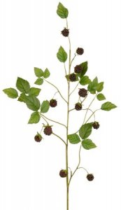 "EF-14  31"" 12–1"" Styro Blackberries, 23–1"" to 2"" Silk Leaves. Color: Black. (Sold Per Dozen)"