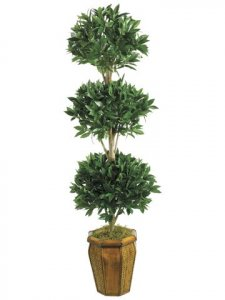 EF-1002 	6' Sweet Bay Ball-Shaped Tree in Hex Wood Container