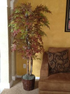 EF-1924  Japanese Maple Tree Red/ Brown/Green