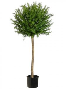 "EF-454 45""  Rosemary Topiary in Plastic Pot Green (Price is for a 2PC Set)"