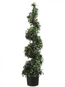 "EF-234  48"" Citrus Leaf Spiral Topiary in Pot Two Tone Green (Price is for a 2 PC Set)"