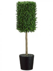 "EF-4466  53""Hx12""Wx12""L Boxwood Topiary in Bamboo Container Green Indoor/Outdoor"