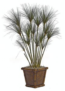A-2570   4' PVC Papyrus Plant 1,010 Green Leaves 14 Grass Heads Weighted Base