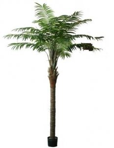 EF-1825 9.5 Foot Artificial Coconut Areca Palm Tree. Comes with a natural coco trunk potted in a non-decorative plastic container with 798 leaves.