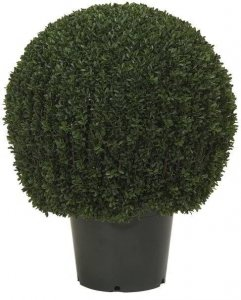 "EF-3337    30"" Tall 22"" Wide  Mini Tea Leaf  Boxwood Topiary has 2919 leaves and comes in a 12"" plastic pot  Indoor/Outdoor"