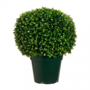 "EF-353  	29"" Tall 18 Wide "" Wide Outdoor Boxwood  Jade Plant Ball in Pot  Green"