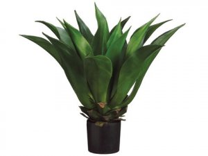 "EF-616  	33"" Giant Mexican Agave in Plastic Pot Green"