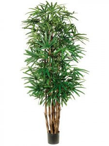 EF-766   7.5' Lady Palm Tree x7 w/1003 Lvs. in Pot Two Tone Green  (Price is for a 2pc Set)