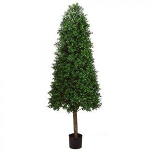 EF-265  	5.5' Outdoor Cone-Shaped Boxwood Topiary in Plastic Pot Two Tone Green Outdoor/Indoor