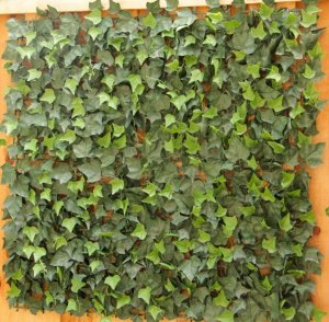 "EF-2534 40"" 40"" Plastic Square Outdoor UV Rated Artificial English Ivy"