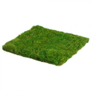 "EF-016  12""Wx12""L Preserved Grass Mat  Green  (Price is for a 12 pc set)"