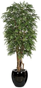 "W-70308 8' Orange Jasmine Tree - Natural Trunk - 16,056 Green Leaves - 35"" Width - Weighted Base"