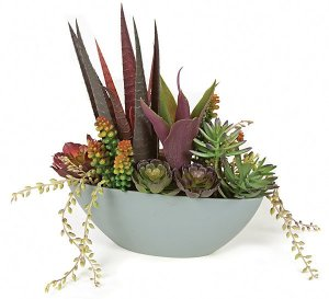 "A-130180   11"" POTTED MIX SUCCULENT"