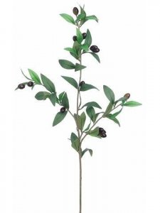 "EF-366   	31.5"" Olive Branch  Green Burgundy  (Price is per Dozen)"