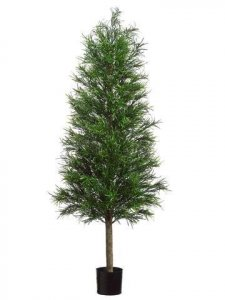 5' Plastic Podocarpus Tower Tree