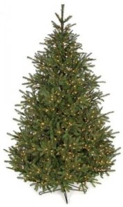 15' Elizabeth Pine Christmas Tree - Full Size - 2,950 Warm White LED Lights