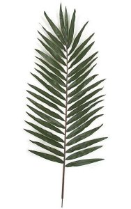 "Giant Palm Branch - 38 Leaves - 26"" Width - Green - FIRE RETARDANT"