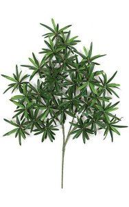 "29"" Podocarpus Branch - 438 Leaves - Green - FIRE RETARDANT"