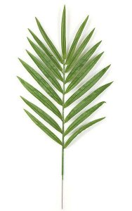 "42"" Kentia Palm Branch - 17 Green Leaves - 7"" Metal Stem"