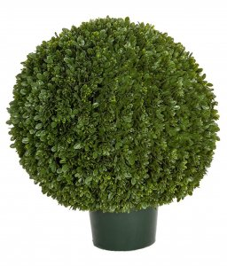 "24"" Japanese Outdoor Boxwood Ball Topiary"
