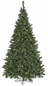 7.5' Winchester Pine Christmas Tree - Full Size - 700 Warm White LED Lights