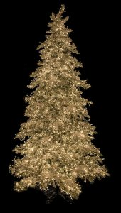 Earthflora's 7.5 Ft., 9 Ft., And 12 Ft. Snowy Flocked Polaris Slim Pine Tree With 3mm Multi-functional Led Lights
