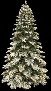 7.5' Flocked Mountain Pine Christmas Tree - Full Size - Warm White LED Lights
