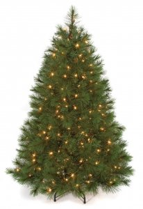 C-91411 4.5 Foot Tall Arolla Pine Christmas Tree - Pine Cones - 250 Clear Lights - Wire Stand