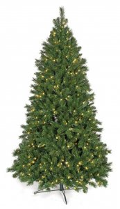 7.5' Westford Pine - Medium Size - Green Tips - 700 Clear Lights