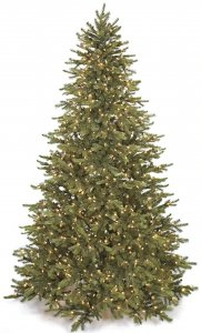7.5' Mountain Fir Christmas Tree - Medium Size - 900 Warm White LED Lights