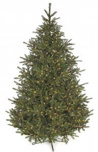9' Elizabeth Pine Christmas Tree - Full Size - 1,100 Warm White LED Lights