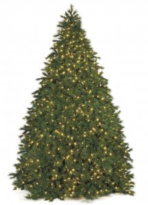 Commercial Pine Christmas Tree - 22,142 Tips - 8,100 Warm White LED Lights