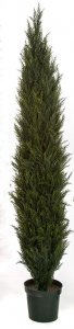 6 Foot Outdoor UV Rated Cypress Tree
