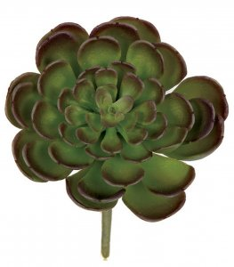 "4"" Plastic Echeveria Pick - Green/Purple Edge - 3.25"" Stem"