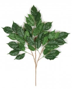 "29"" Ficus Branch - 42 Leaves - Green - FIRE RETARDANT"