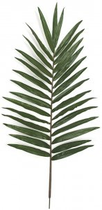 "50"" Giant Palm Branch - 30 Leaves - Green - FIRE RETARDANT"