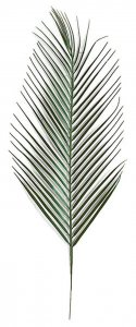 "31"" Areca Palm Branch - Green"