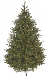 12' Elizabeth Pine Christmas Tree - Full Size - 1,800 Warm White LED Lights