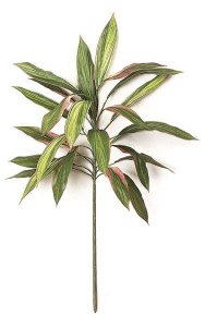 "PR-413 34"" Cordyline Stem - 24 Leaves - FIRE RETARDANT"