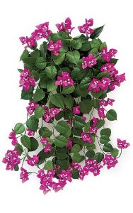 "36"" Bougainvillea Bush - 216 Leaves - 146 Flowers"