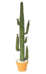 Plastic Saguaro Cactus - Green - Assembly Required - Bare Stem